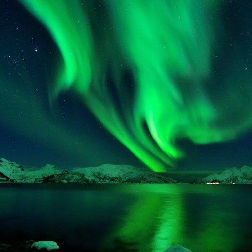 Northern Lights Show, nature, natural, green, Mother Nature, London Christmas Party Show, Lapland, Christmas, Events, Management, Theming, Lapland, Igloo, Snow, Christmas 2018, Party, Exhibitions, London, Plaisterer's Hall, May 2018, venues, London, houses, snow, forest,